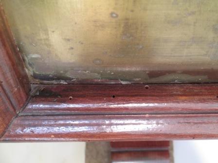 carcoma vs termitas