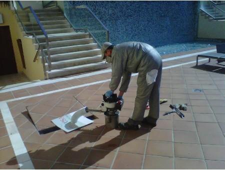 Eliminación de insectos Málaga