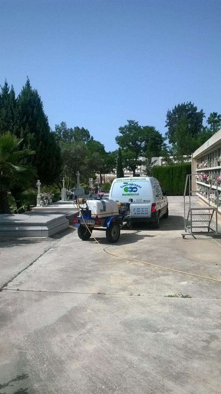 tratamientos fitosanitarios cementerio Málaga
